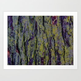 Mossy Bark Art Print