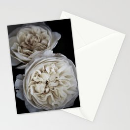 Petticoat Roses Stationery Cards
