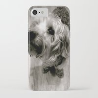 jake iPhone & iPod Cases featuring Jake by Julia Blanchette