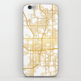 ORLANDO FLORIDA CITY STREET MAP ART iPhone Skin