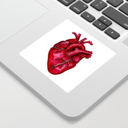 Anatomical Heart Painting Red Sticker