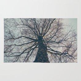 Shield of tree Rug