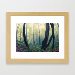 Fairytale Forest Framed Art Print