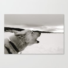 Calling Out B&W Canvas Print
