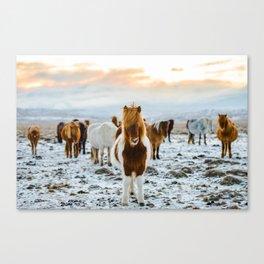 Nordic Wild Canvas Print