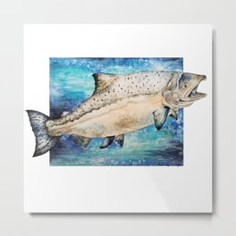 King Salmon Metal Print