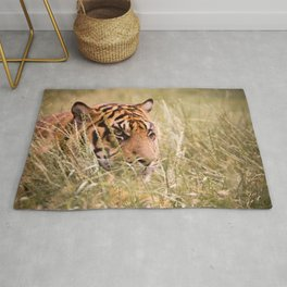 Tiger in the grass Rug