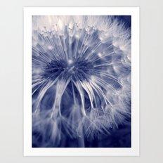 blue dandelion I Art Print
