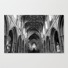 Such Great Heights Canvas Print