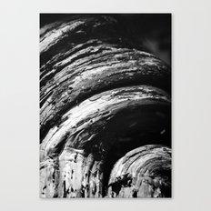 Curves Canvas Print