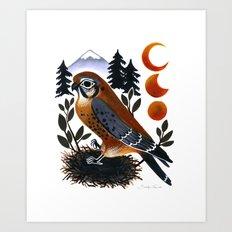 The Blue Ridge Kestrel Art Print