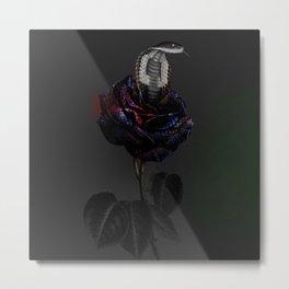 cobra rosa Metal Print