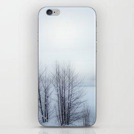 Pale Lake II iPhone Skin
