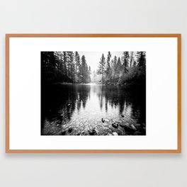 Forest Reflection Lake - Black and White  - Nature Photography Framed Art Print