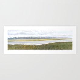 Carrizo Plain Mega Bloom, Central California Art Print