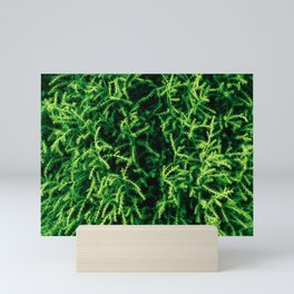 Lush Forest Mini Art Print