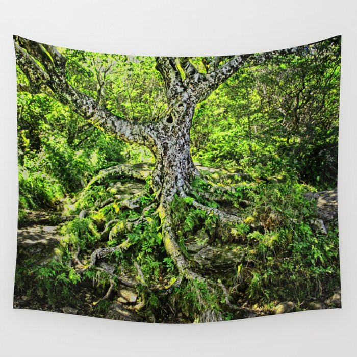 Craggy Pinnacle Trail Tree Wall Tapestry