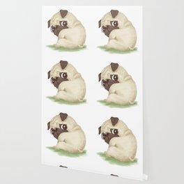 Pug Wallpaper