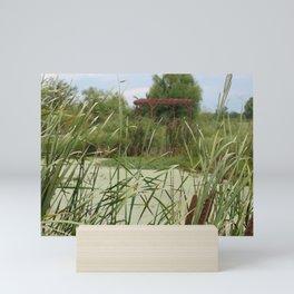 Reeds, pond and shelter Mini Art Print