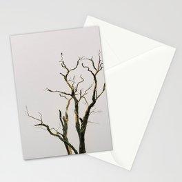 NORTHAMPTON Stationery Cards