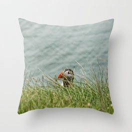 Peekaboo Throw Pillow