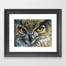 Owl 811 Framed Art Print