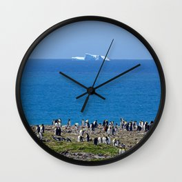 King Penguins in front of an iceberg Wall Clock