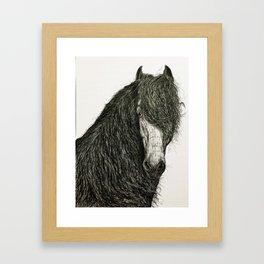 Stallion Framed Art Print