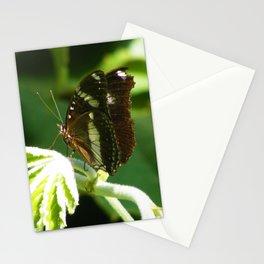 Butterfly 7 Stationery Cards