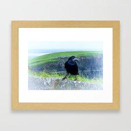 black raven Framed Art Print