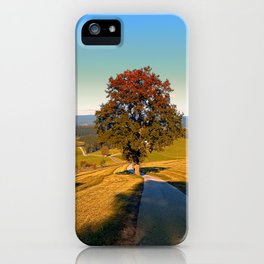 Roadside tree in indian summer colors | landscape photography iPhone Case