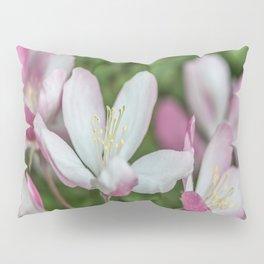 Spring Daintiness Pillow Sham