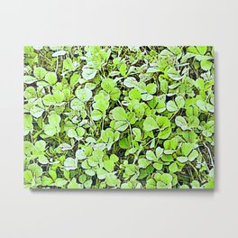 Popped Clover Metal Print