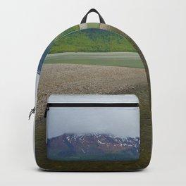 Mendenhall Glacier Juneau Alaska Backpack