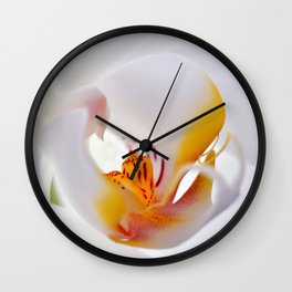 Orchid white macro 055 Wall Clock