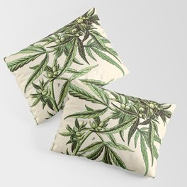 Cannabis Sativa - Vintage botanical illustration Pillow Sham