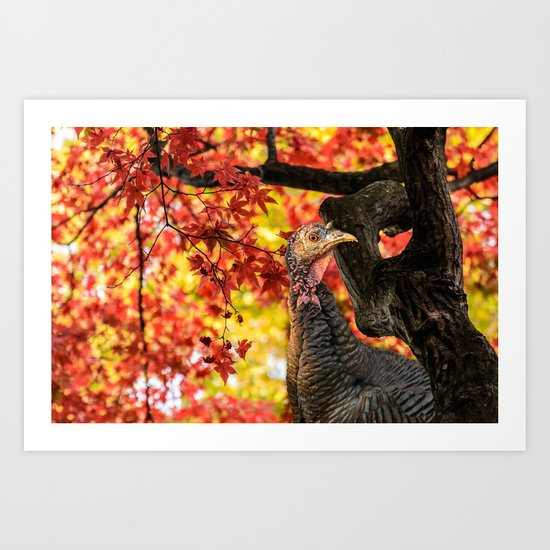 HAPPY THANKSGIVING   FROM WILD TURKEY Art Print