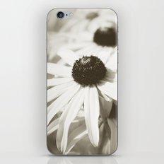 Fading Summer iPhone & iPod Skin