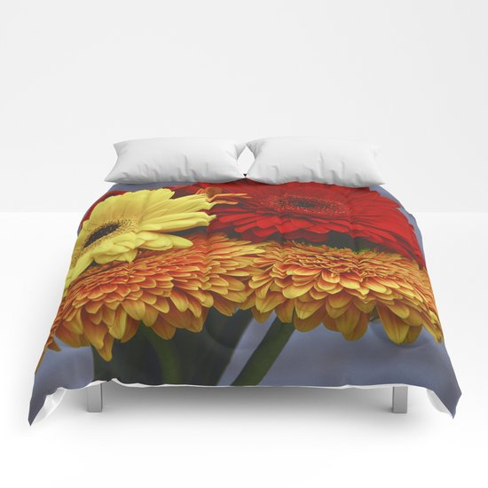 Colorful Germini Comforters