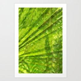 Cambodian Foliage Art Print