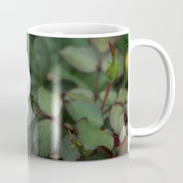 Soft Pink Rose off set Coffee Mug