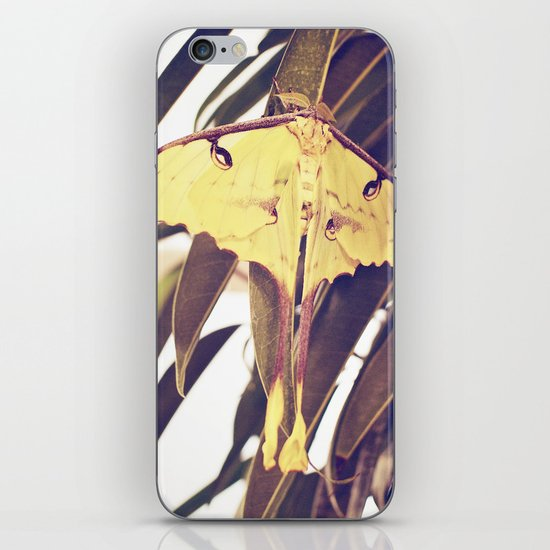Yellow Flutterby iPhone & iPod Skin