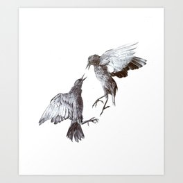 Nightingales Art Print