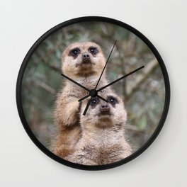Meerkat_20171101_by_JAMFoto Wall Clock