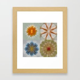 Fulvous Certainty Flowers  ID:16165-113635-96480 Framed Art Print