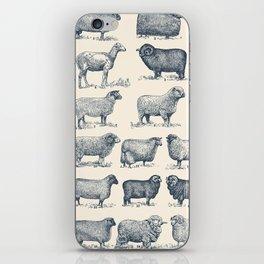 Types of Sheep iPhone Skin