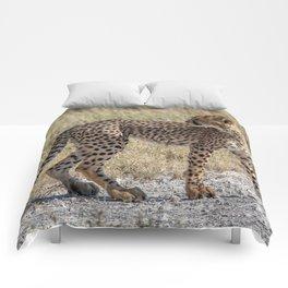 Cheetah Cub 3 Comforters