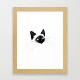 Curious Siamese Kitten Framed Art Print