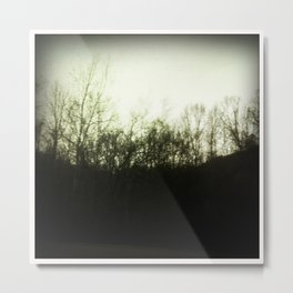 Southern Forest Metal Print