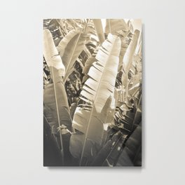 Banana Leaf Metal Print
